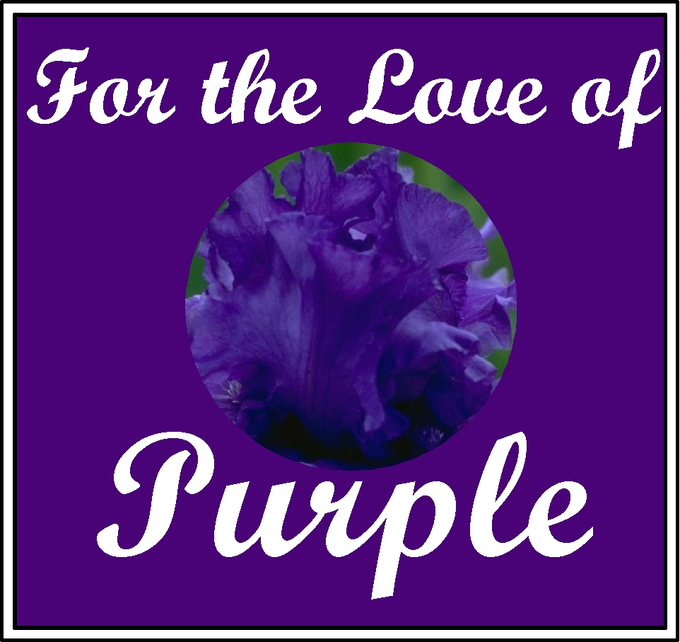 For the love of purple 187 the purple store