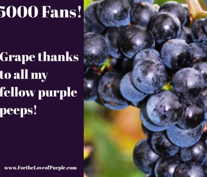 Over 5000 Facebook Fans!